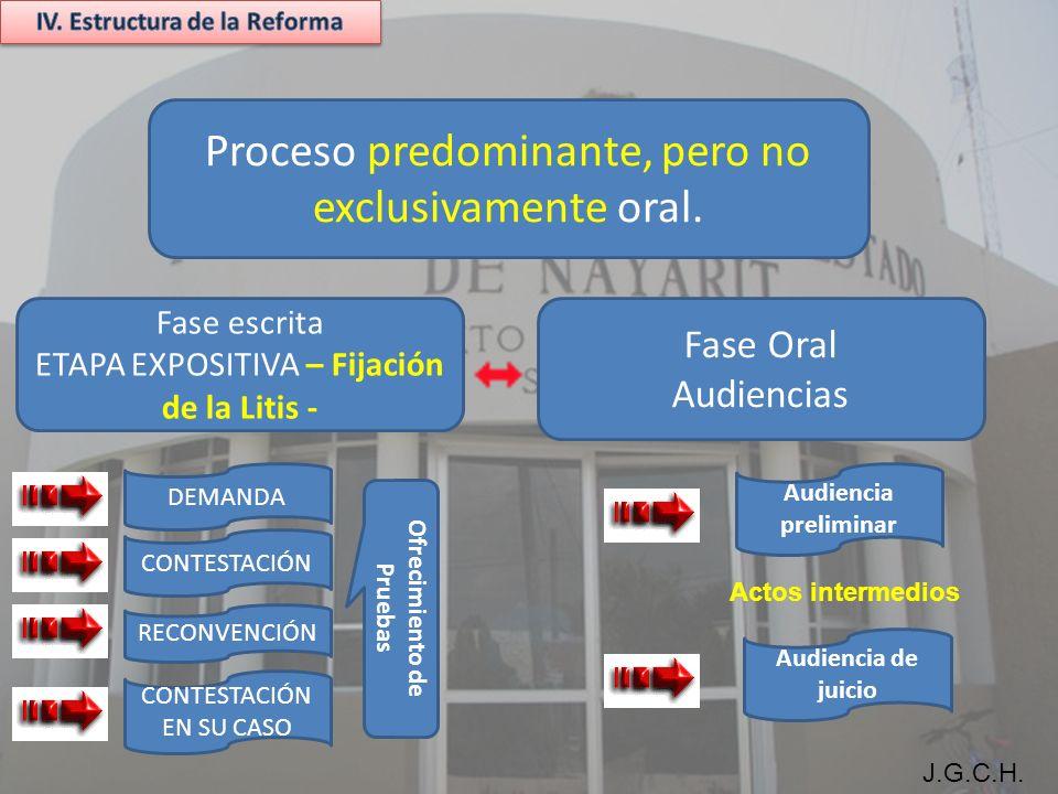 J.G.C.H. Proceso predominante, pero no exclusivamente oral.