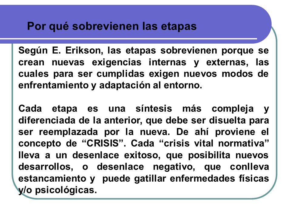 Por qué sobrevienen las etapas Según E. Erikson, las etapas sobrevienen porque se crean nuevas exigencias internas y externas, las cuales para ser cum