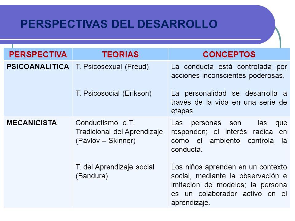 PERSPECTIVAS DEL DESARROLLO PERSPECTIVATEORIASCONCEPTOS PSICOANALITICAT. Psicosexual (Freud) T. Psicosocial (Erikson) La conducta está controlada por