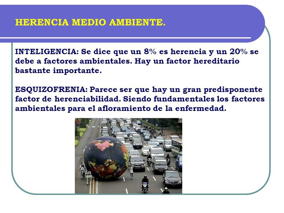 INTELIGENCIA: Se dice que un 8% es herencia y un 20% se debe a factores ambientales. Hay un factor hereditario bastante importante. ESQUIZOFRENIA: Par