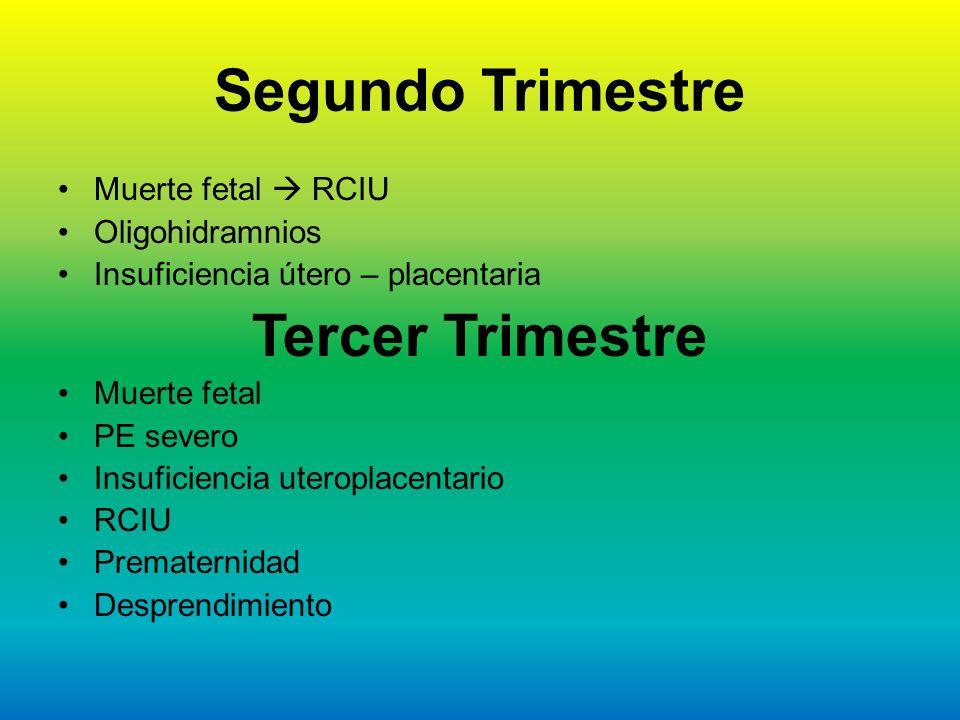 Segundo Trimestre Muerte fetal RCIU Oligohidramnios Insuficiencia útero – placentaria Tercer Trimestre Muerte fetal PE severo Insuficiencia uteroplace