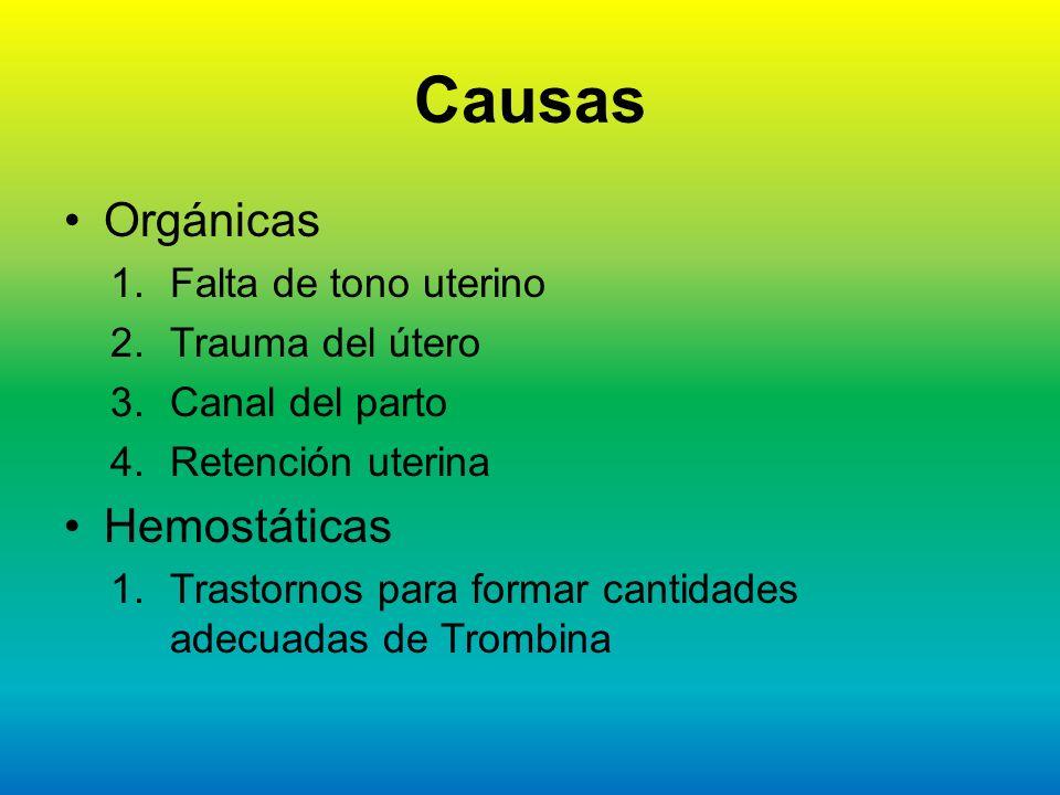 Causas Orgánicas 1.Falta de tono uterino 2.Trauma del útero 3.Canal del parto 4.Retención uterina Hemostáticas 1.Trastornos para formar cantidades ade