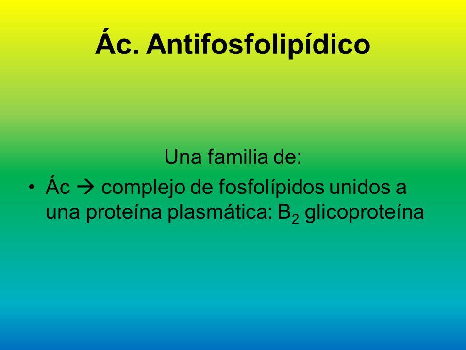 Ác. Antifosfolipídico Una familia de: Ác complejo de fosfolípidos unidos a una proteína plasmática: B 2 glicoproteína