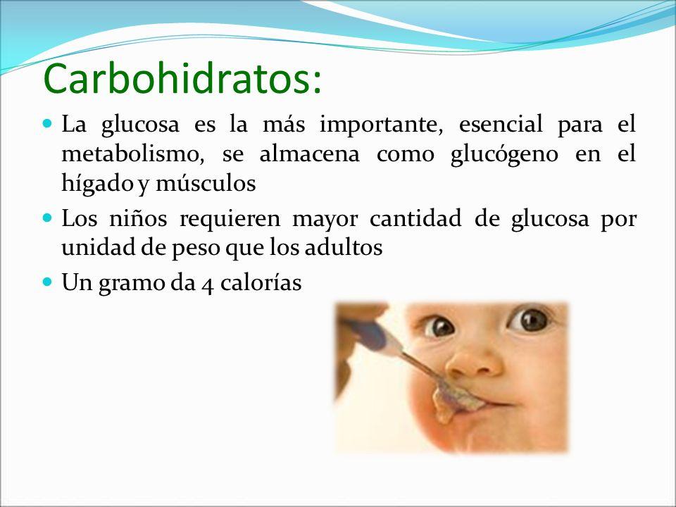 Carbohidratos: La glucosa es la más importante, esencial para el metabolismo, se almacena como glucógeno en el hígado y músculos Los niños requieren m