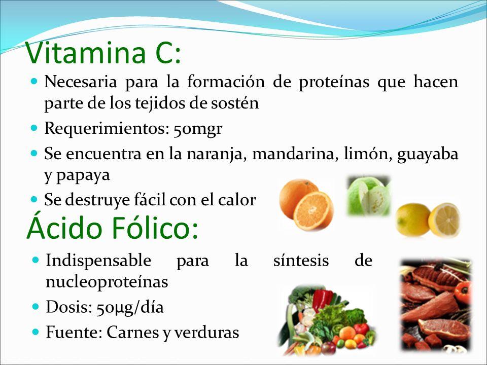 Vitamina C: Necesaria para la formación de proteínas que hacen parte de los tejidos de sostén Requerimientos: 50mgr Se encuentra en la naranja, mandar