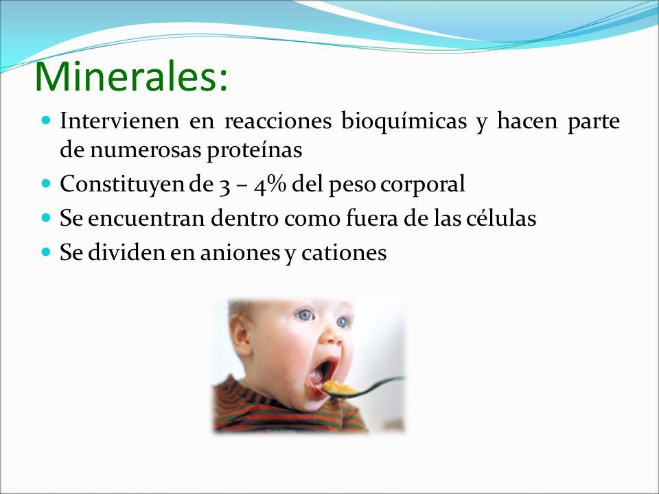 Minerales: Intervienen en reacciones bioquímicas y hacen parte de numerosas proteínas Constituyen de 3 – 4% del peso corporal Se encuentran dentro com