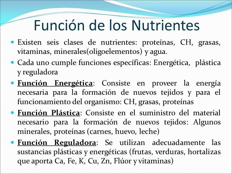 Función de los Nutrientes Existen seis clases de nutrientes: proteínas, CH, grasas, vitaminas, minerales(oligoelementos) y agua. Cada uno cumple funci