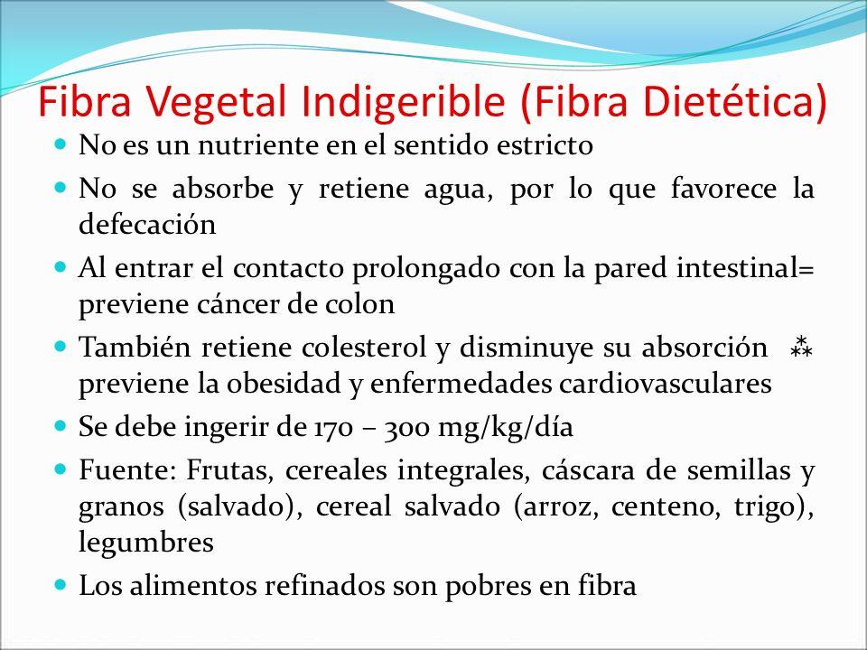 Fibra Vegetal Indigerible (Fibra Dietética) No es un nutriente en el sentido estricto No se absorbe y retiene agua, por lo que favorece la defecación