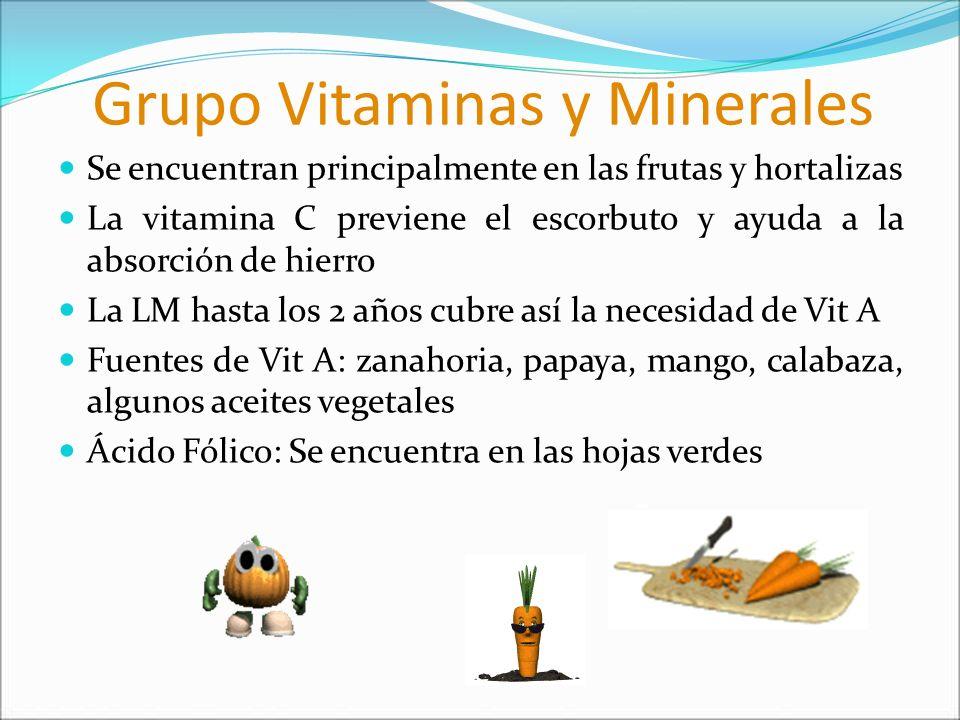 Grupo Vitaminas y Minerales Se encuentran principalmente en las frutas y hortalizas La vitamina C previene el escorbuto y ayuda a la absorción de hier