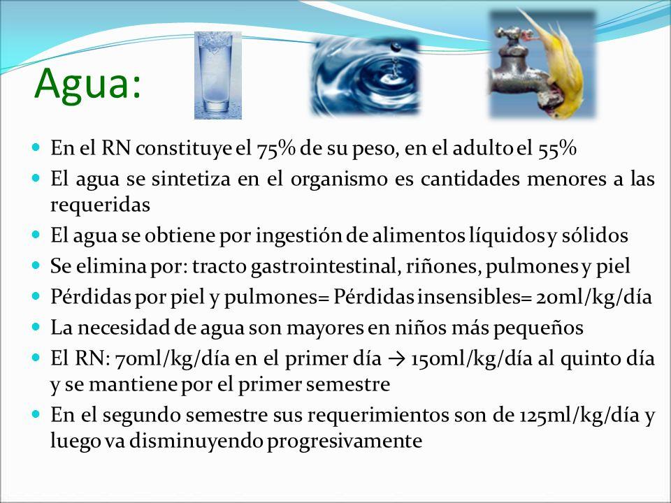 Agua: En el RN constituye el 75% de su peso, en el adulto el 55% El agua se sintetiza en el organismo es cantidades menores a las requeridas El agua s