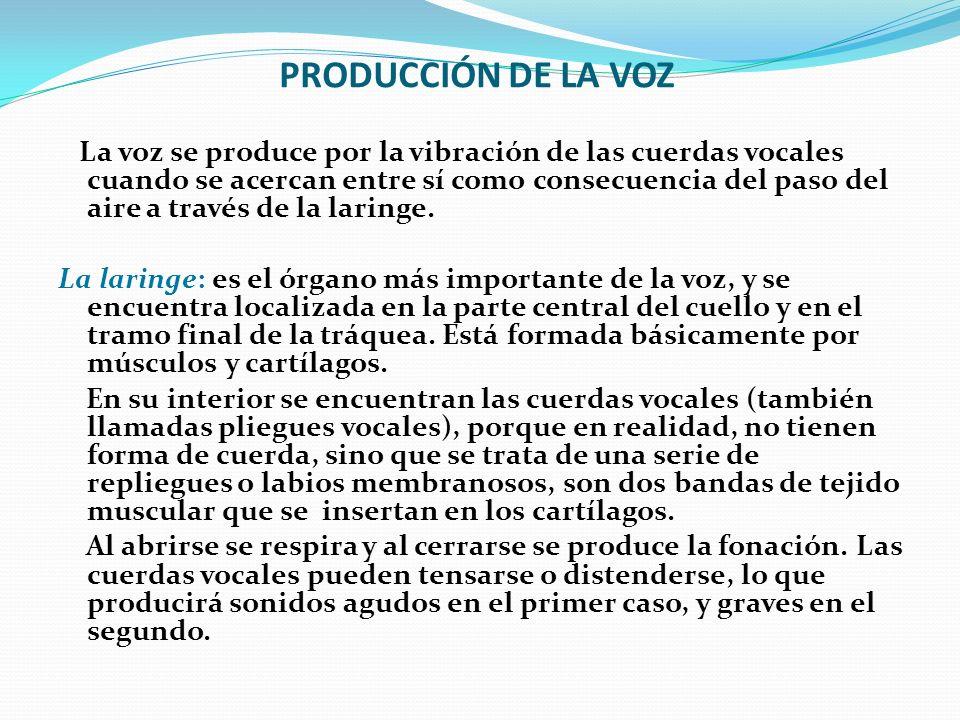 PRODUCCIÓN DE LA VOZ La voz se produce por la vibración de las cuerdas vocales cuando se acercan entre sí como consecuencia del paso del aire a través