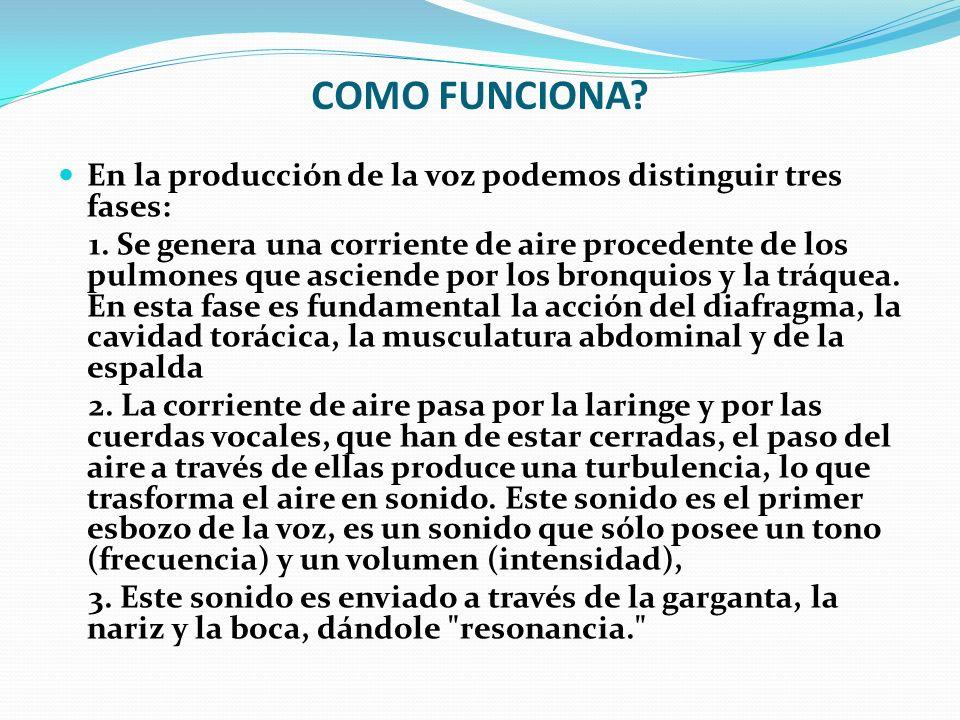 COMO FUNCIONA? En la producción de la voz podemos distinguir tres fases: 1. Se genera una corriente de aire procedente de los pulmones que asciende po