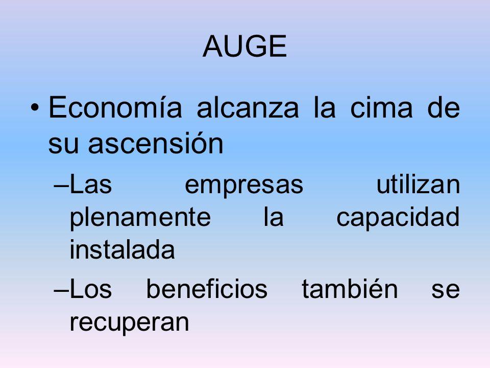 AUGE Economía alcanza la cima de su ascensión –Las empresas utilizan plenamente la capacidad instalada –Los beneficios también se recuperan