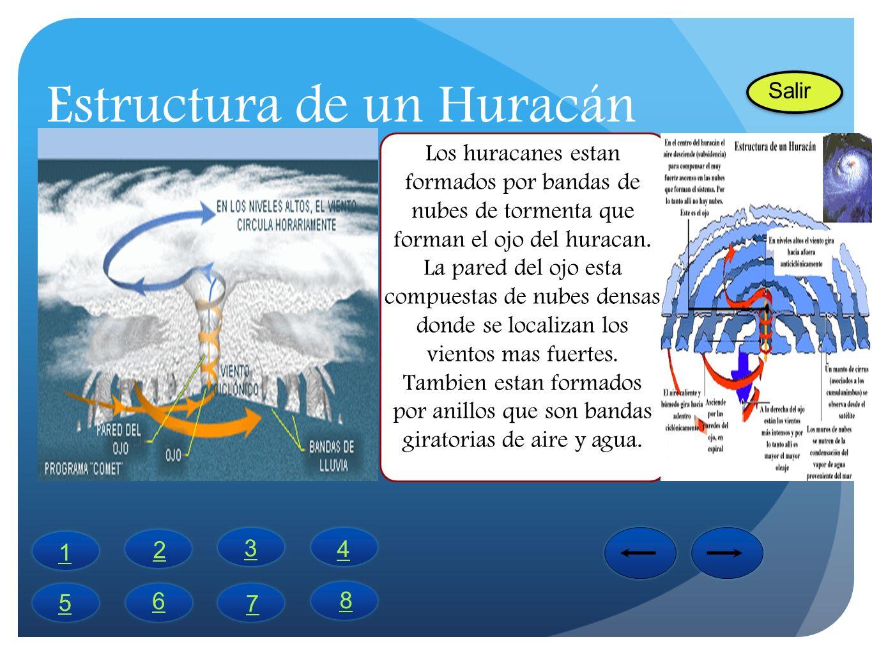 Estructura de un Huracán Los huracanes estan formados por bandas de nubes de tormenta que forman el ojo del huracan. La pared del ojo esta compuestas