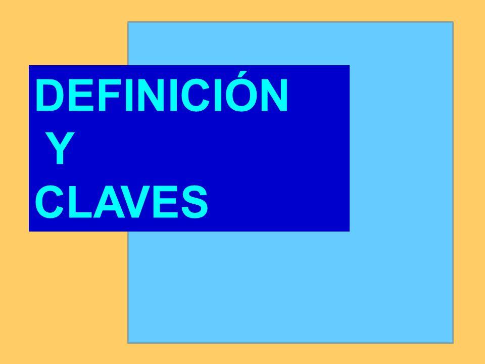 DEFINICIÓN Y CLAVES