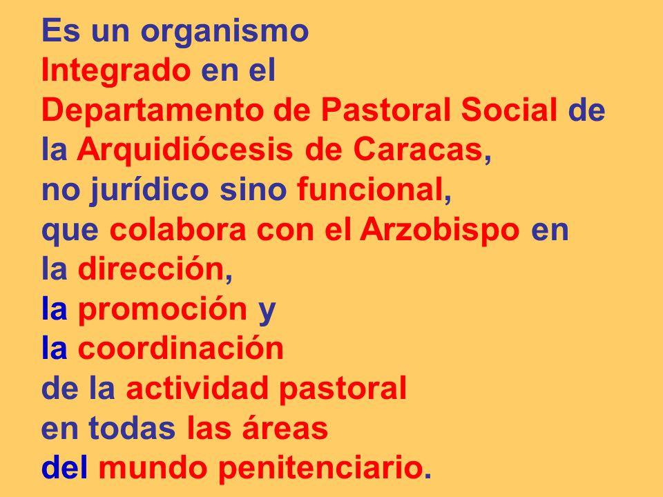 9.- AGENTES DE PASTORAL PENITENCIARIA: Son Agentes de Pastoral Penitenciaria los SACERDOTES, DIÁCONOS, RELIGIOSOS/AS Y LAICOS QUE DESCUBREN SU VOCACIÓN AL SERVICIO DEL PRIVADO DE LIBERTAD, Y QUE POR DESIGNACIÓN O NOMBRAMIENTO DEL ARZOBISPO O INTEGRADOS EN EL VOLUNTARIADO PENITENCIARIO CATÓLICO, SON ENVIADOS POR LA IGLESIA (ARZOBISPO), COMO PASTORAL PENITENCIARIA ARQUIDIOCESANA, A SER TESTIGOS DEL EVANGELIO EN EL MUNDO PENITENCIARIO Se distribuyen en dos (2) grandes bloques operativos, con sus estructuras organizativas propias, coordinados entre sí y a través de la Delegación Arquidiocesana de Pastoral Penitenciaria.
