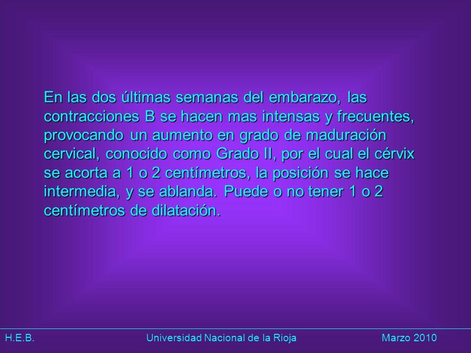 H.E.B. Universidad Nacional de la RiojaMarzo 2010 En las dos últimas semanas del embarazo, las contracciones B se hacen mas intensas y frecuentes, pro