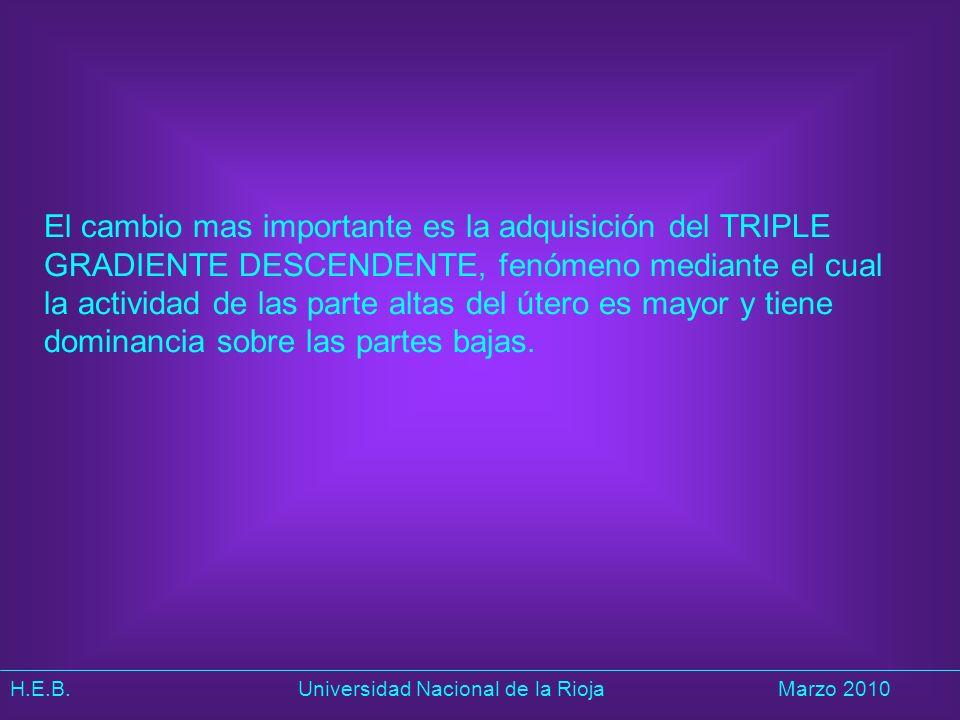 H.E.B. Universidad Nacional de la RiojaMarzo 2010 El cambio mas importante es la adquisición del TRIPLE GRADIENTE DESCENDENTE, fenómeno mediante el cu