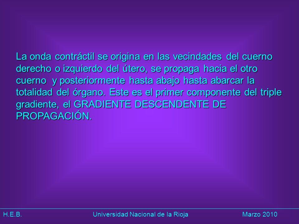 H.E.B. Universidad Nacional de la RiojaMarzo 2010 La onda contráctil se origina en las vecindades del cuerno derecho o izquierdo del útero, se propaga