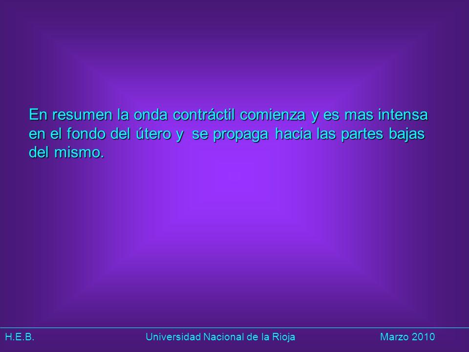 H.E.B. Universidad Nacional de la RiojaMarzo 2010 En resumen la onda contráctil comienza y es mas intensa en el fondo del útero y se propaga hacia las