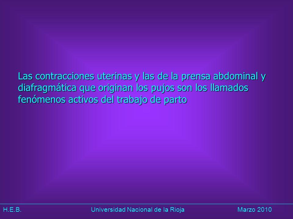H.E.B. Universidad Nacional de la RiojaMarzo 2010 Las contracciones uterinas y las de la prensa abdominal y diafragmática que originan los pujos son l