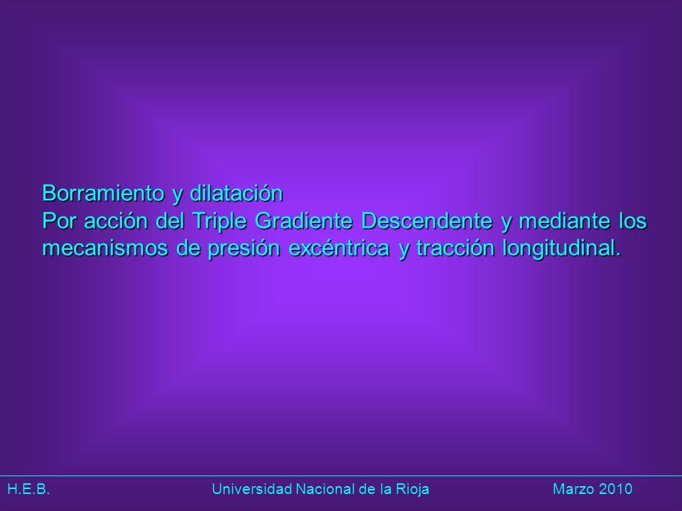 H.E.B. Universidad Nacional de la RiojaMarzo 2010 Borramiento y dilatación Por acción del Triple Gradiente Descendente y mediante los mecanismos de pr