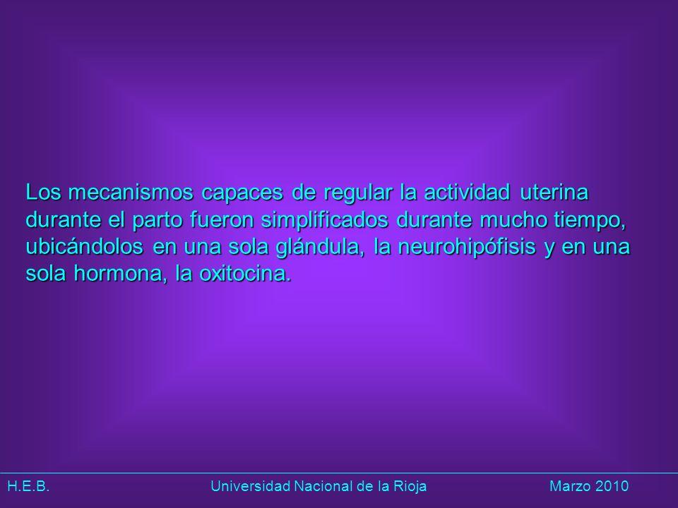 H.E.B. Universidad Nacional de la RiojaMarzo 2010 Los mecanismos capaces de regular la actividad uterina durante el parto fueron simplificados durante
