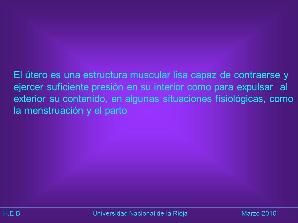 H.E.B. Universidad Nacional de la RiojaMarzo 2010 El útero es una estructura muscular lisa capaz de contraerse y ejercer suficiente presión en su inte