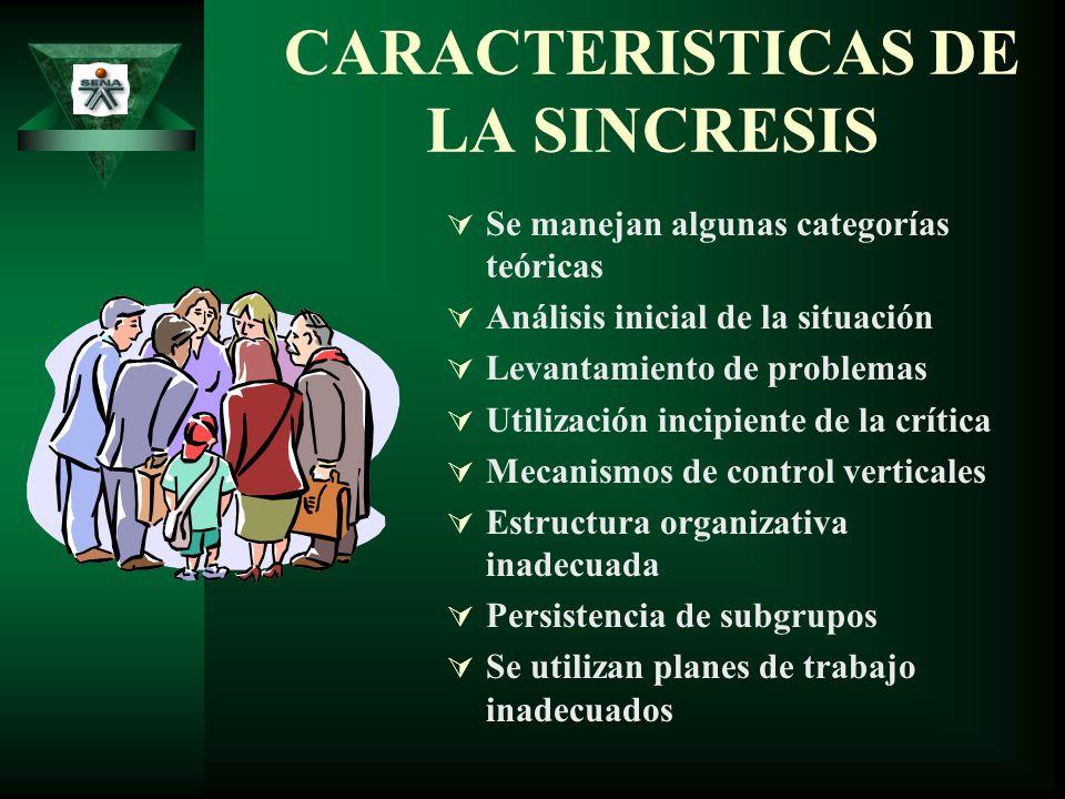 CARACTERISTICAS DE LA SINCRESIS Se manejan algunas categorías teóricas Análisis inicial de la situación Levantamiento de problemas Utilización incipie