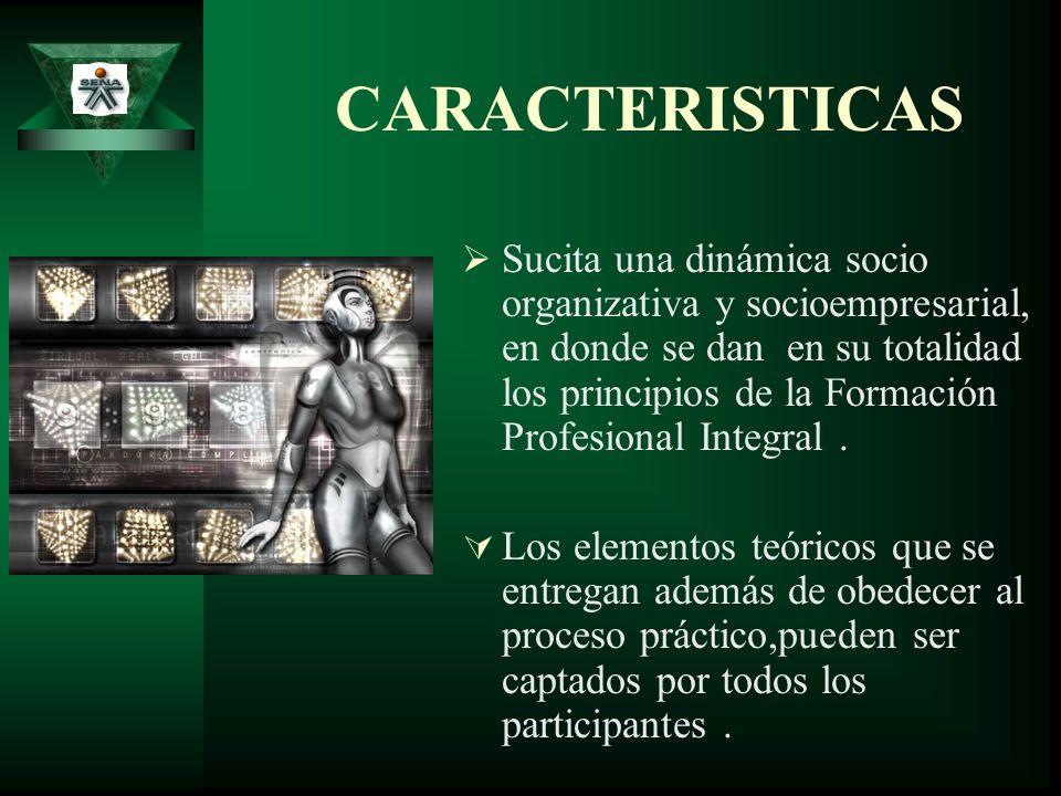 CARACTERISTICAS Sucita una dinámica socio organizativa y socioempresarial, en donde se dan en su totalidad los principios de la Formación Profesional