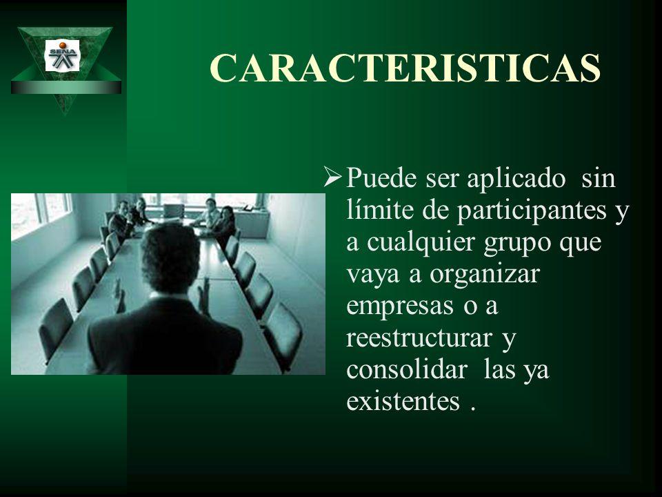 CARACTERISTICAS DE LA SINTESIS Integración total de la teoría de organización a la práctica.
