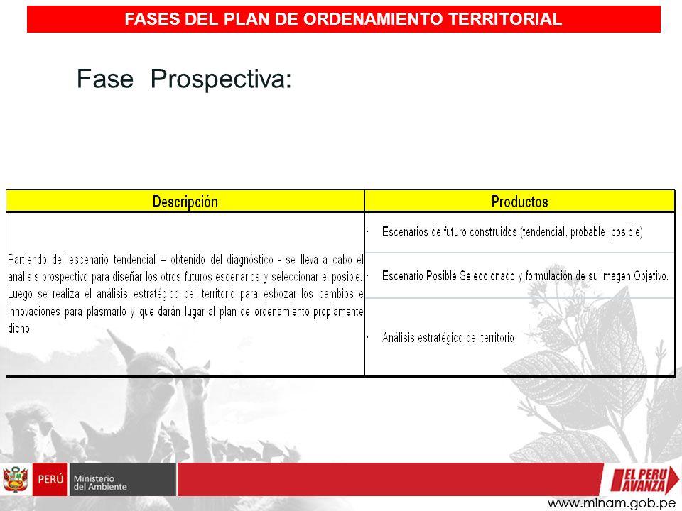 Fase Prospectiva: FASES DEL PLAN DE ORDENAMIENTO TERRITORIAL