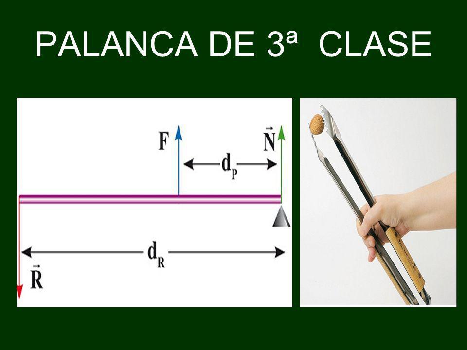 PALANCA DE 3ª CLASE