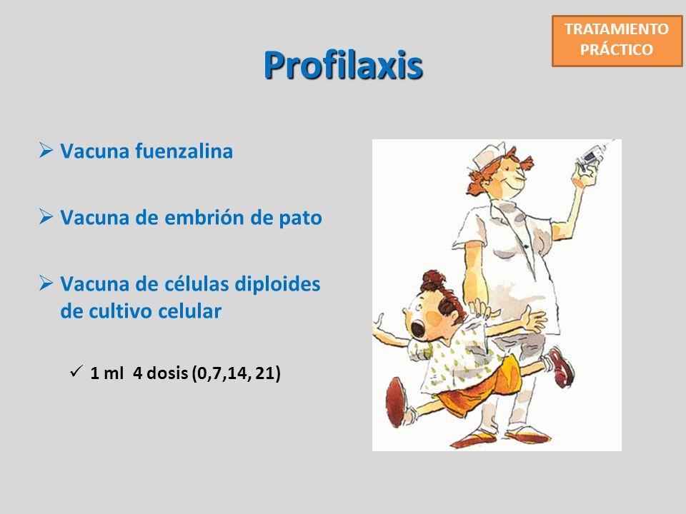 Profilaxis Vacuna fuenzalina Vacuna de embrión de pato Vacuna de células diploides de cultivo celular 1 ml 4 dosis (0,7,14, 21) TRATAMIENTO PRÁCTICO