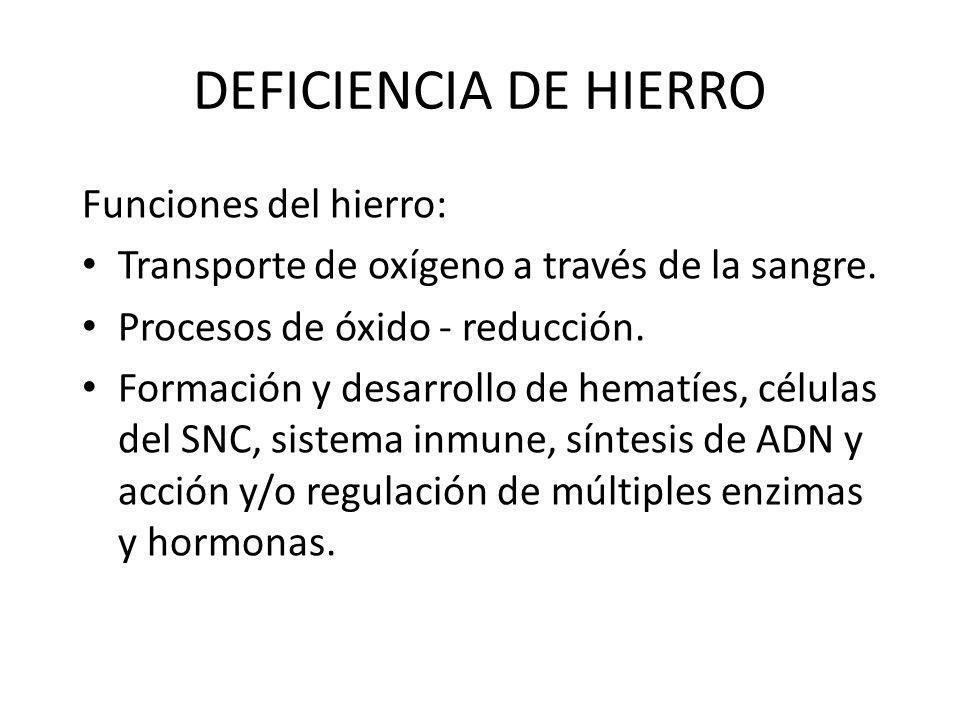 Funciones del hierro: Transporte de oxígeno a través de la sangre. Procesos de óxido - reducción. Formación y desarrollo de hematíes, células del SNC,