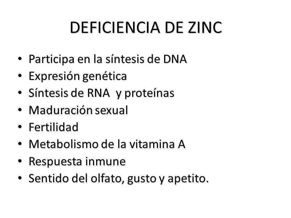 DEFICIENCIA DE ZINC Participa en la síntesis de DNA Participa en la síntesis de DNA Expresión genética Expresión genética Síntesis de RNA y proteínas