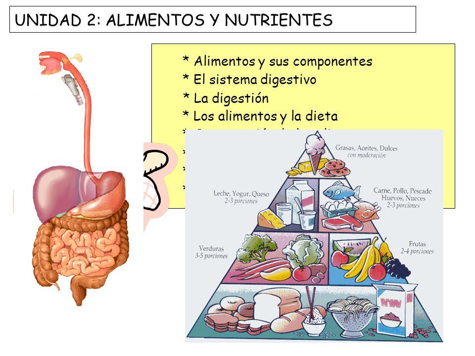 UNIDAD 2: ALIMENTOS Y NUTRIENTES * Alimentos y sus componentes * El sistema digestivo * La digestión * Los alimentos y la dieta * Conservación de los