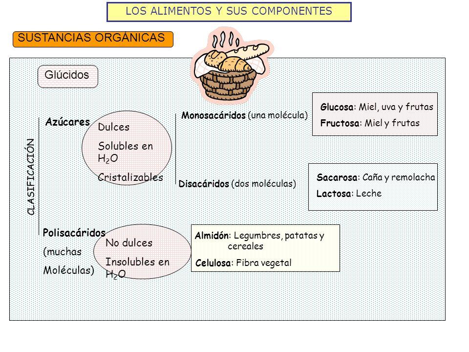 LOS ALIMENTOS Y SUS COMPONENTES SUSTANCIAS ORGÁNICAS Glúcidos Glucosa: Miel, uva y frutas Fructosa: Miel y frutas Sacarosa: Caña y remolacha Lactosa: