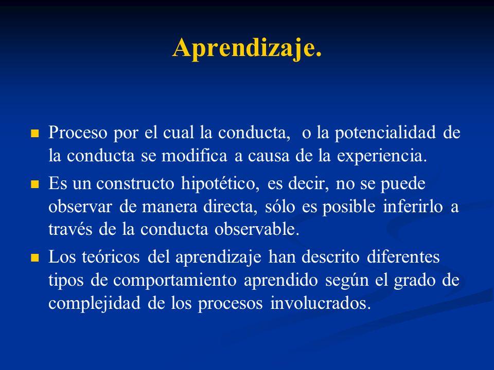 Aprendizaje. Proceso por el cual la conducta, o la potencialidad de la conducta se modifica a causa de la experiencia. Es un constructo hipotético, es