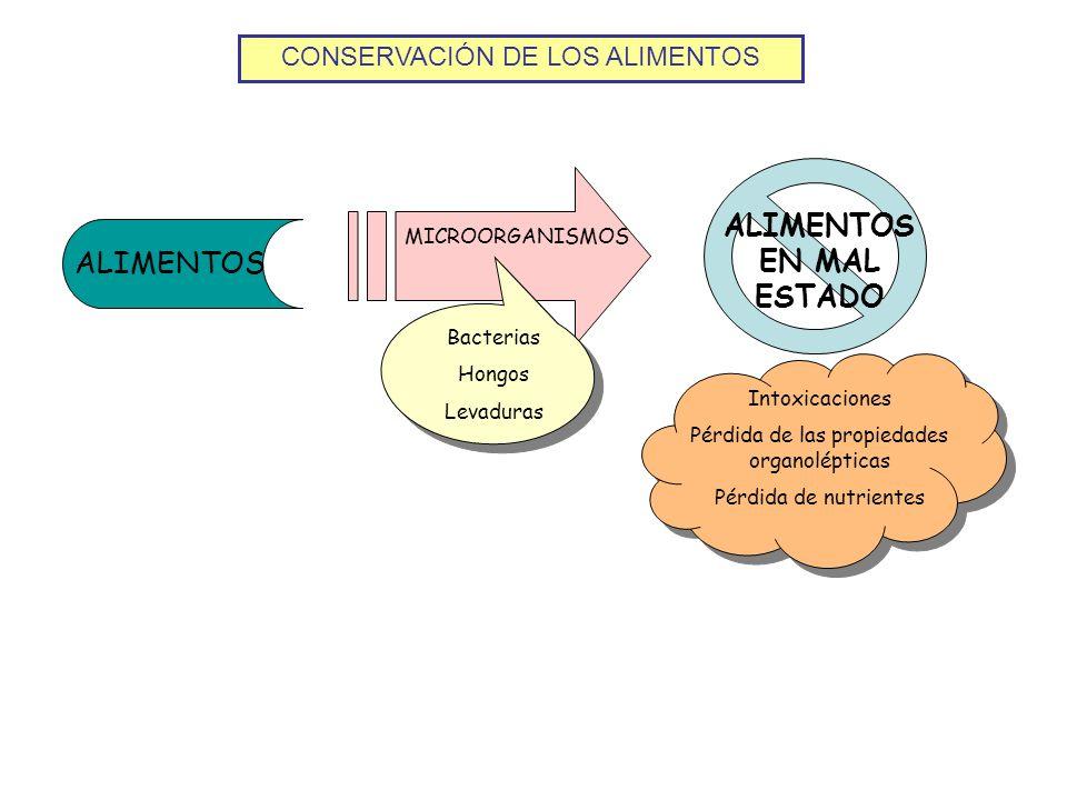 CONSERVACIÓN DE LOS ALIMENTOS ALIMENTOS ALIMENTOS EN MAL ESTADO MICROORGANISMOS Intoxicaciones Pérdida de las propiedades organolépticas Pérdida de nu