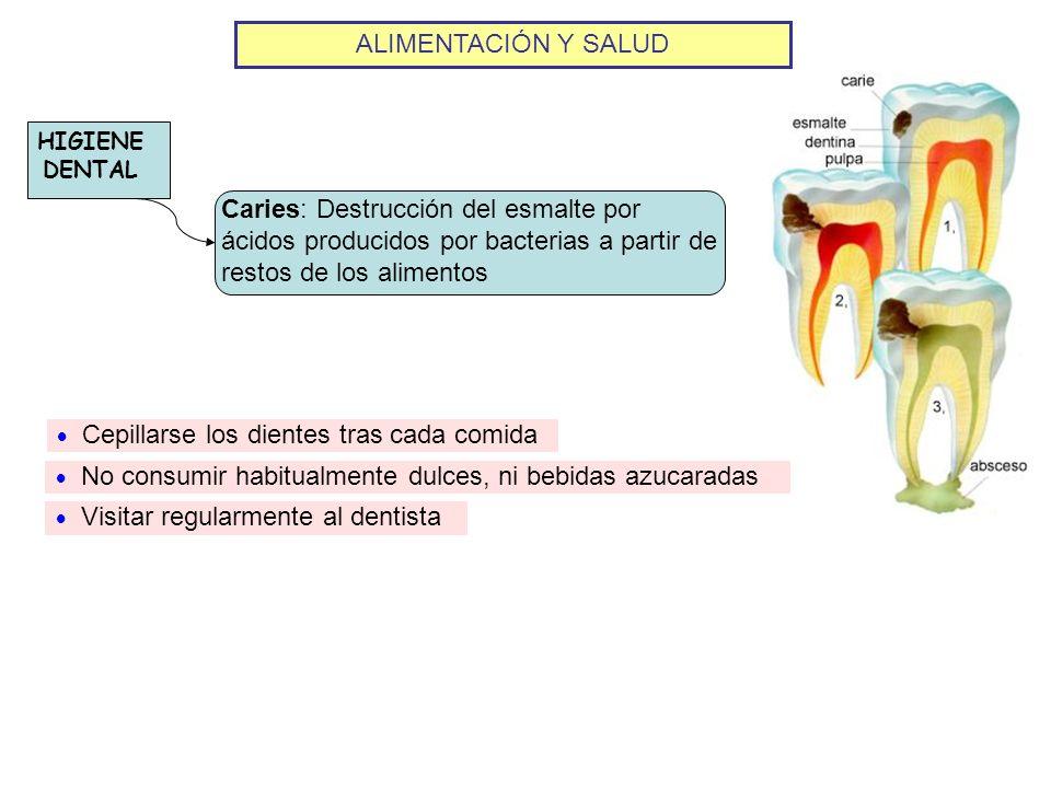 ALIMENTACIÓN Y SALUD HIGIENE DENTAL Caries: Destrucción del esmalte por ácidos producidos por bacterias a partir de restos de los alimentos Cepillarse