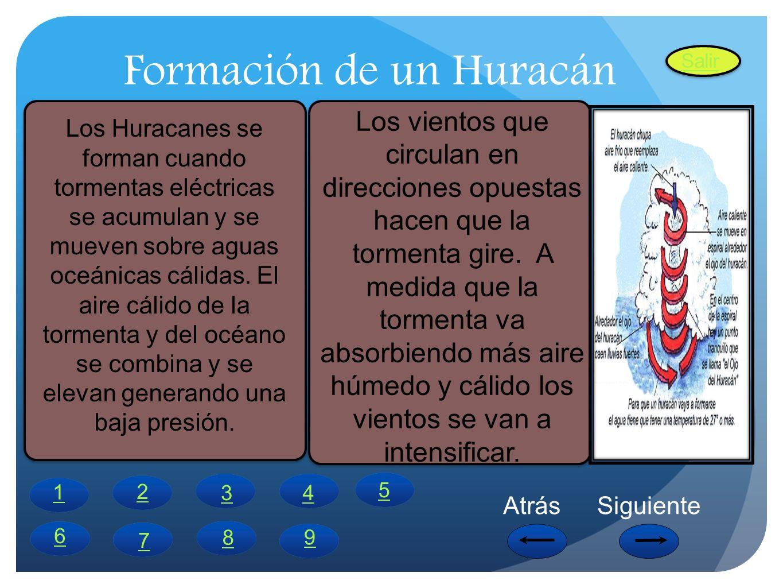 Formación de un Huracán Los Huracanes se forman cuando tormentas eléctricas se acumulan y se mueven sobre aguas oceánicas cálidas. El aire cálido de l