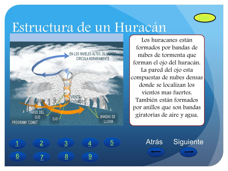 Estructura de un Huracán Los huracanes están formados por bandas de nubes de tormenta que forman el ojo del huracán. La pared del ojo esta compuestas