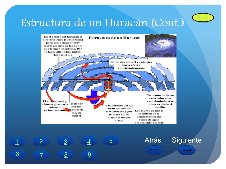 Estructura de un Huracán (Cont.) 2 1 43 6 5 7 8 AtrásSiguiente Salir 9