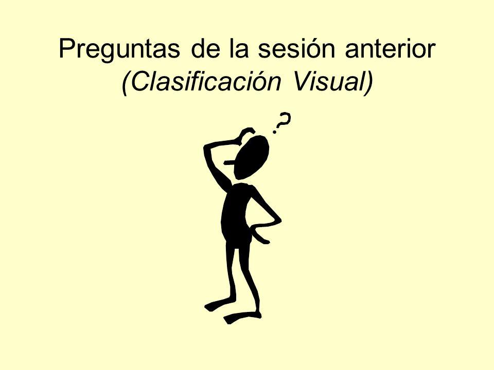 Preguntas de la sesión anterior (Clasificación Visual)