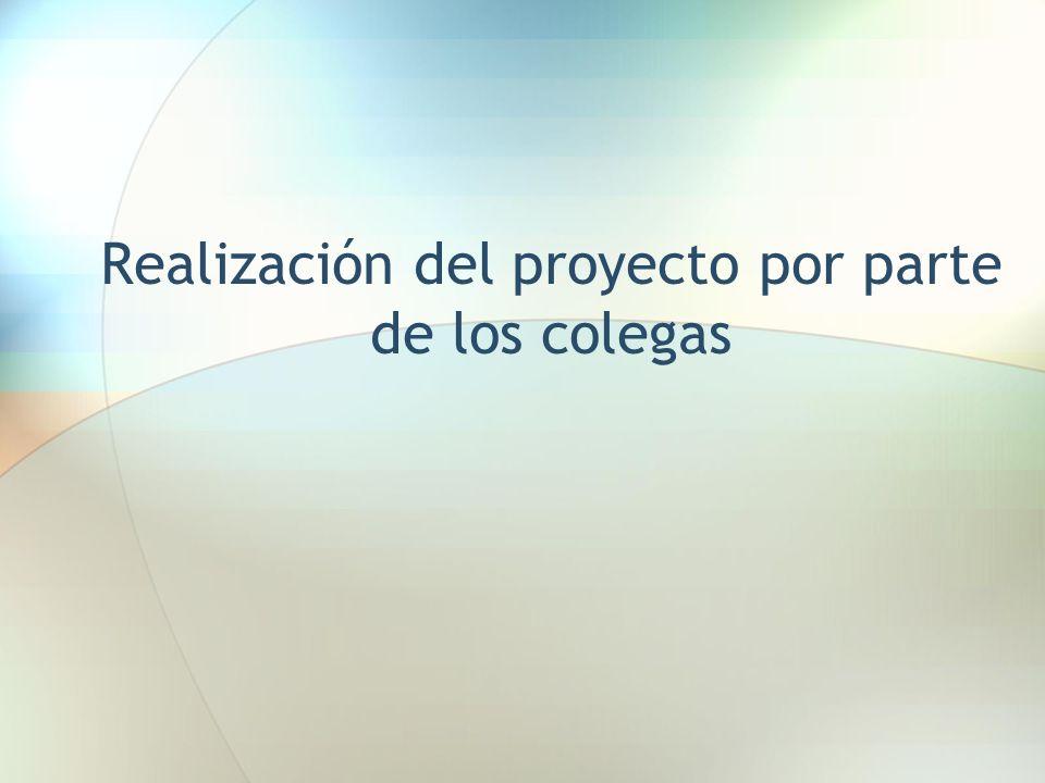 Realización del proyecto por parte de los colegas