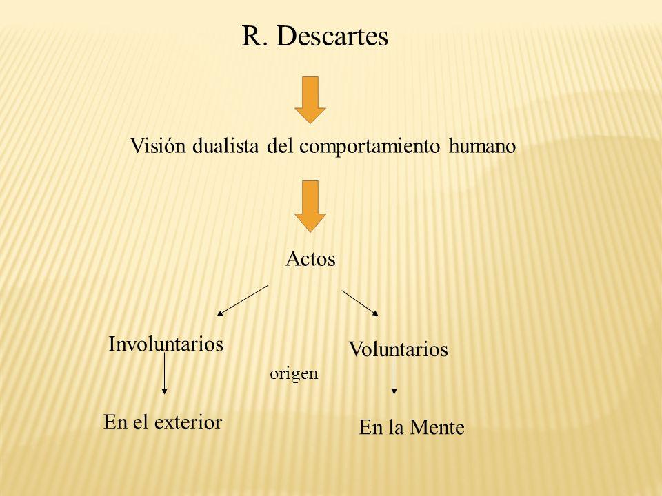 R. Descartes Visión dualista del comportamiento humano Actos Involuntarios Voluntarios origen En el exterior En la Mente