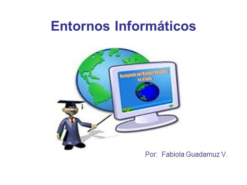 Entornos Informáticos Por: Fabiola Guadamuz V.
