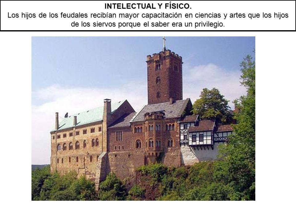 INTELECTUAL Y FÍSICO. Los hijos de los feudales recibían mayor capacitación en ciencias y artes que los hijos de los siervos porque el saber era un pr