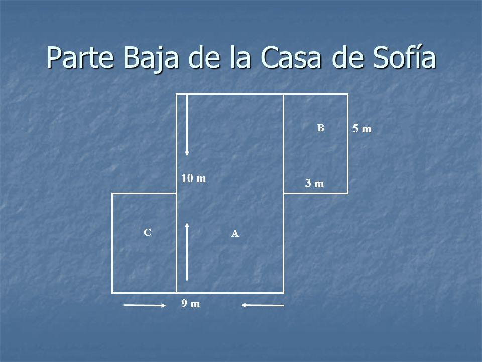 Datos Importantes Este Este es el esquema de la parte baja de la casa de Sofía.